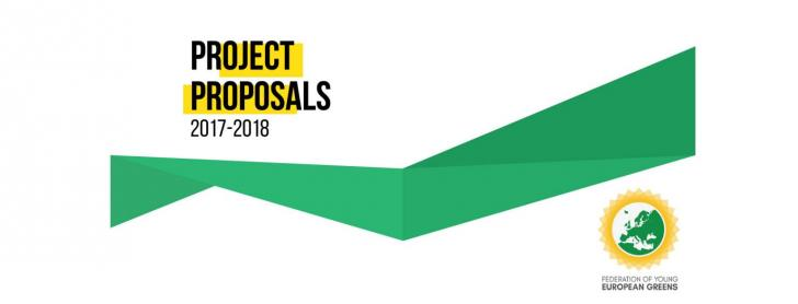 Call For Project Proposals   Federation Of Young European
